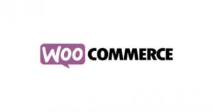 Top Website Design Company